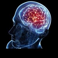 Повишаване на интелигентността