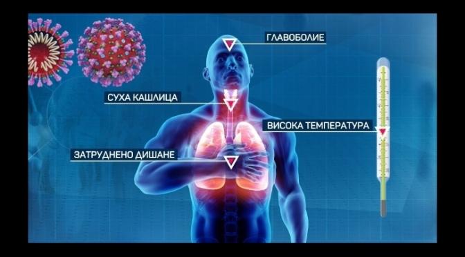 Имунна система и COVID-19